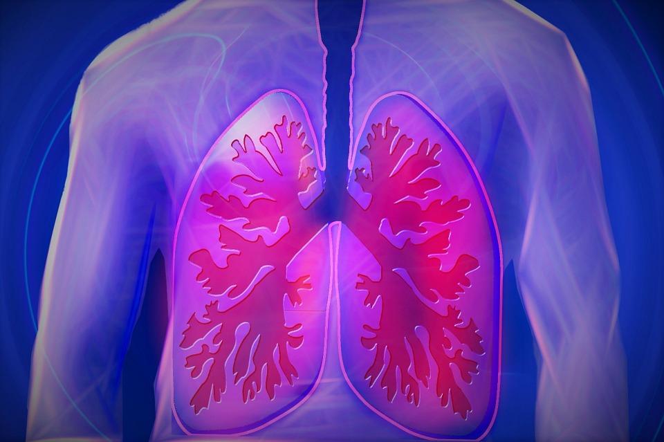 您知道吗?室内空气污染比室外严重5-10倍