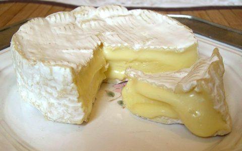 6种不同的奶酪及其特点