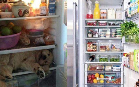 6大水果别放冰箱!恐成细菌温床吃坏肚