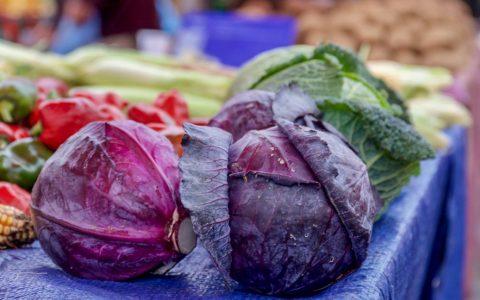紫甘蓝的8个令人赞叹的好处