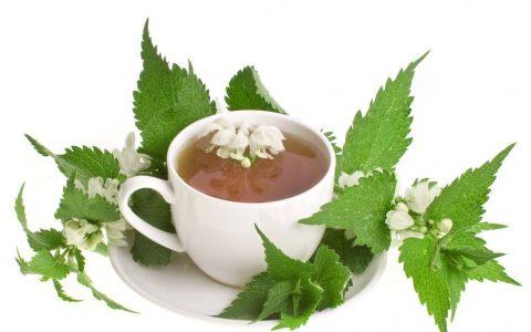 荨麻茶对健康的好处